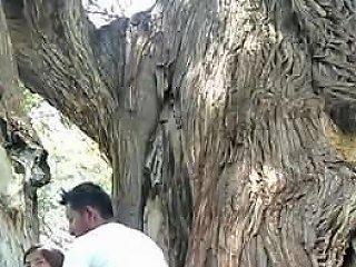Guy Fucking Girl Outdoor Free Indian Porn 56 Xhamster